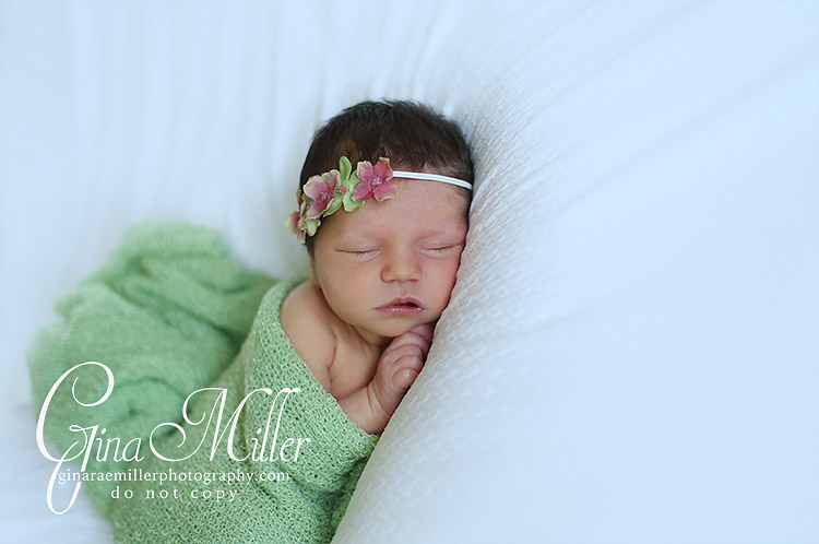 e6 elizabeth fiona | long island newborn photographer