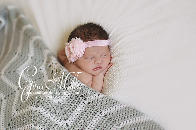 pay1 payton harper | long island newborn photographer