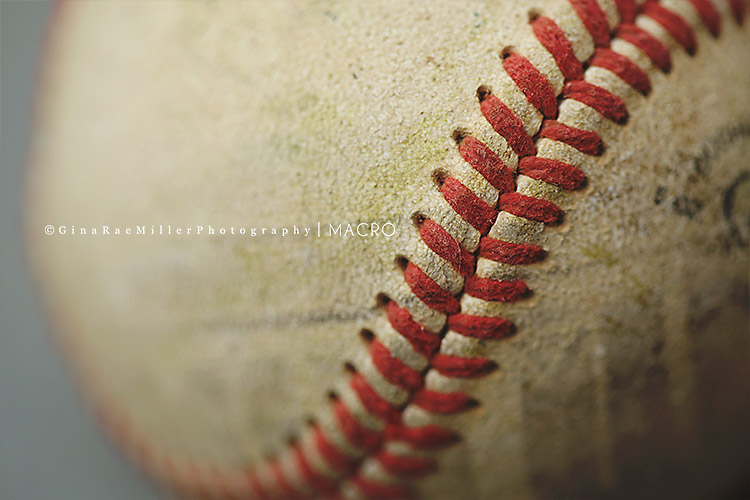 Gina Rae Miller Photography Long Island New York Photographer Macro Baseball
