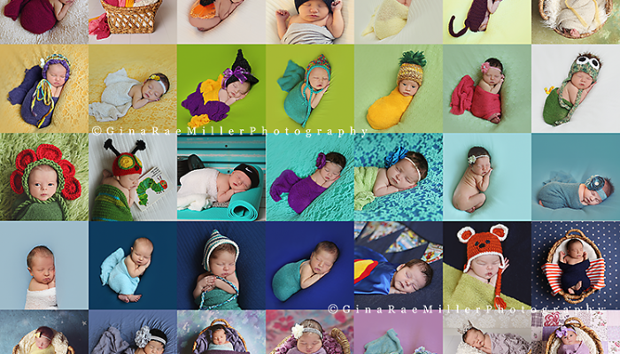 2014 re-cap, newborn style | long island newborn photographer