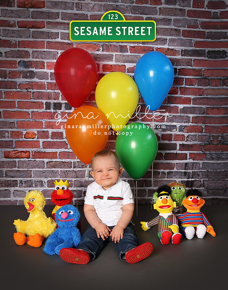 sesame street | long island childrens photographer