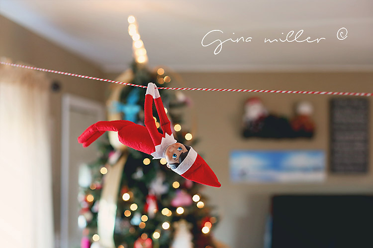 Miller Family Elf on the Shelf Christmas
